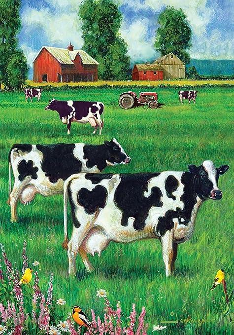 Amazon.com: Custom Decor vaca campo banderas y juego de ...