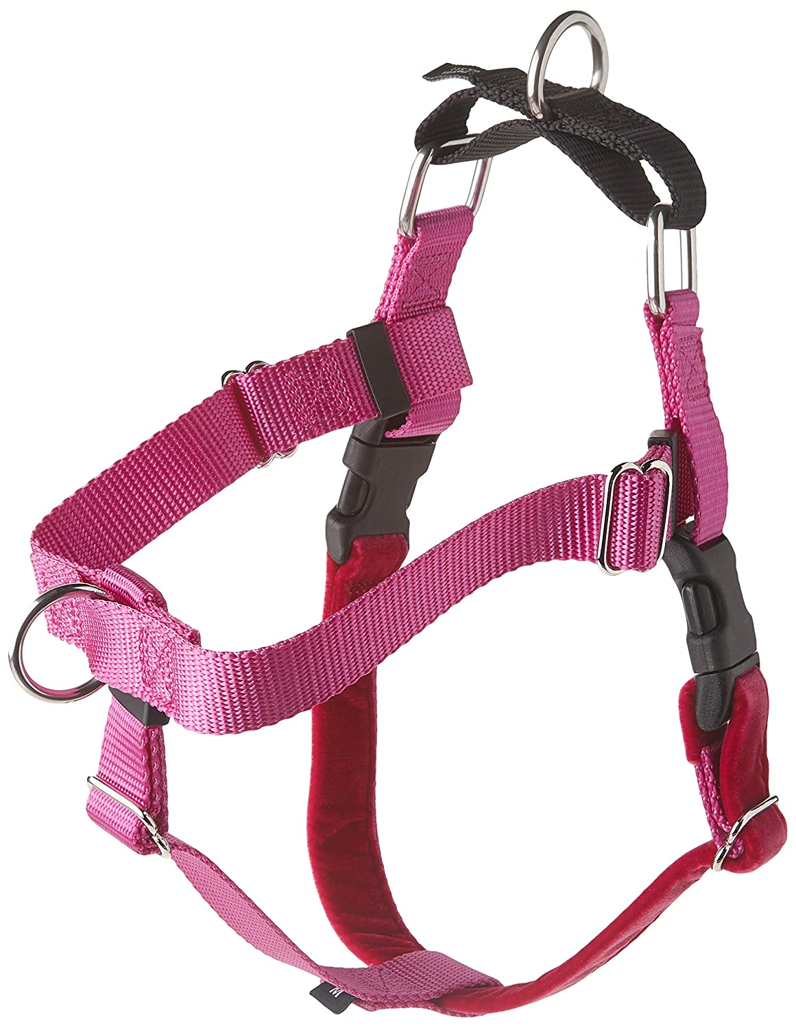 Raspberry Medium2 Hounds Design Freedom NoPull Dog Harness Training Package with Leash, Royal bluee, Large (1Inch Wide)