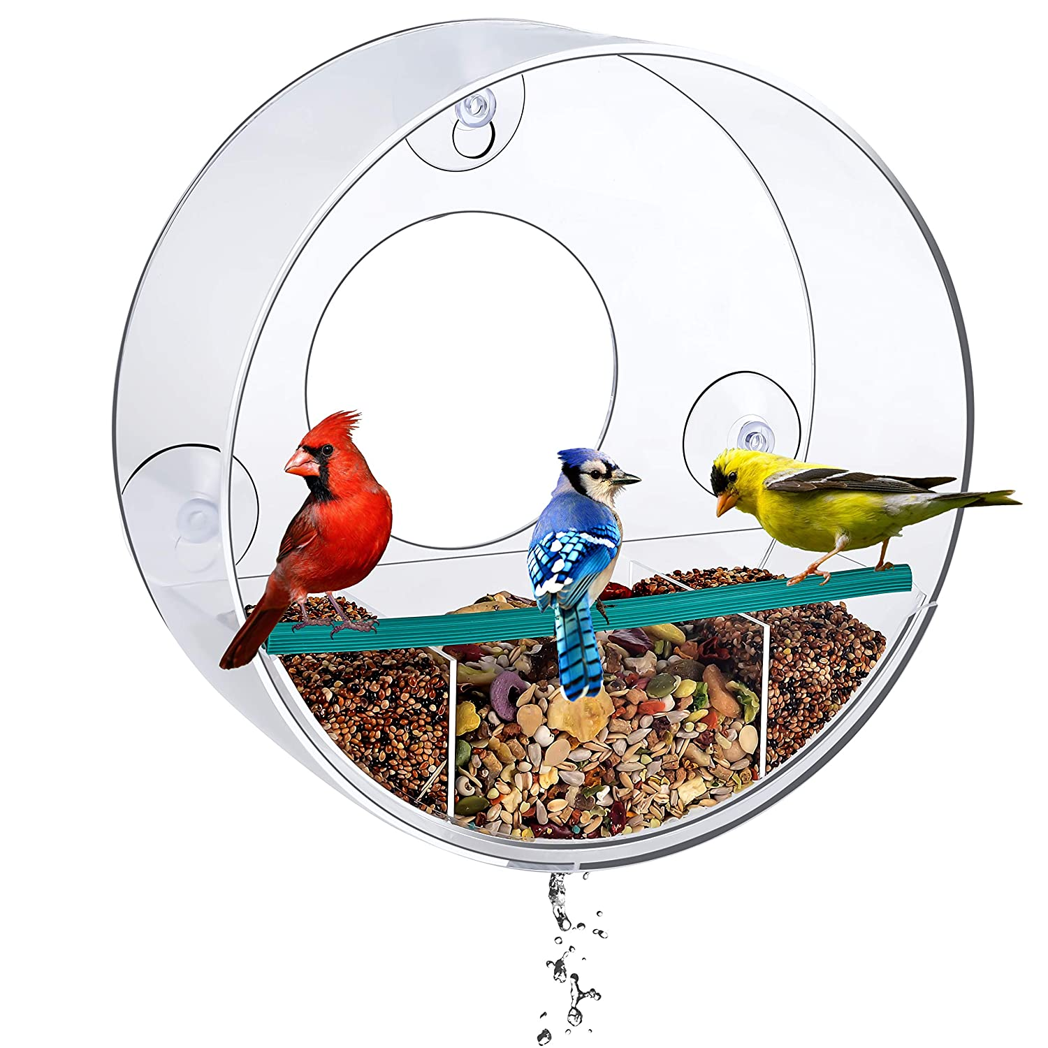 Birdious Tube Window Bird Feeder with Strong Suction Cups and Removable Tray: Watch Wild Backyard Birds from Your House- Clear, See Through, Large Birdfeeder for Outside- Best Gift Idea