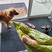 Amazon.com: AmazonBasics - Bolsa de residuos para perro con ...