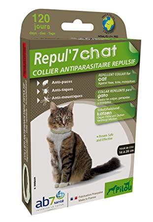 PILOU Collar ultrasonidos Repelente Gato para Gato Verde: Amazon.es: Productos para mascotas