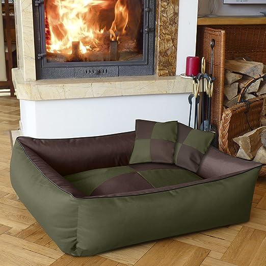 147 opinioni per Beddog 2in1 MAX QUATTRO marrone/verde XXL, 120x85 cm, letto per cane L fino a