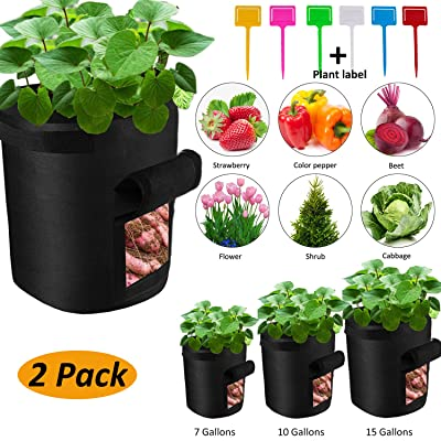 Hsonline Grow Bags, 2-Pack 15 Gallon Plant Grow Bags with Access Flap and Handles, Potato Grow Bags, Pots Grow Bags, Garden Vegetable Planter Growing Containers for Carrot, Onion, Fruit, etc (Black) : Garden & Outdoor