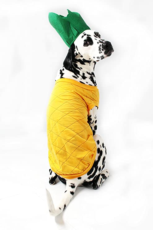 Pineapple Dog Costume By Midlee Xxx Large