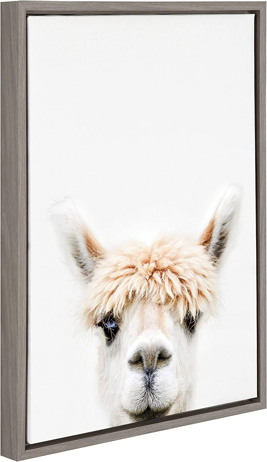 Amazon Com Kate And Laurel Sylvie Alpaca Bangs Animal Print Portrait Framed Canvas Wall Art By Amy Peterson 18x24 Gray Posters Prints
