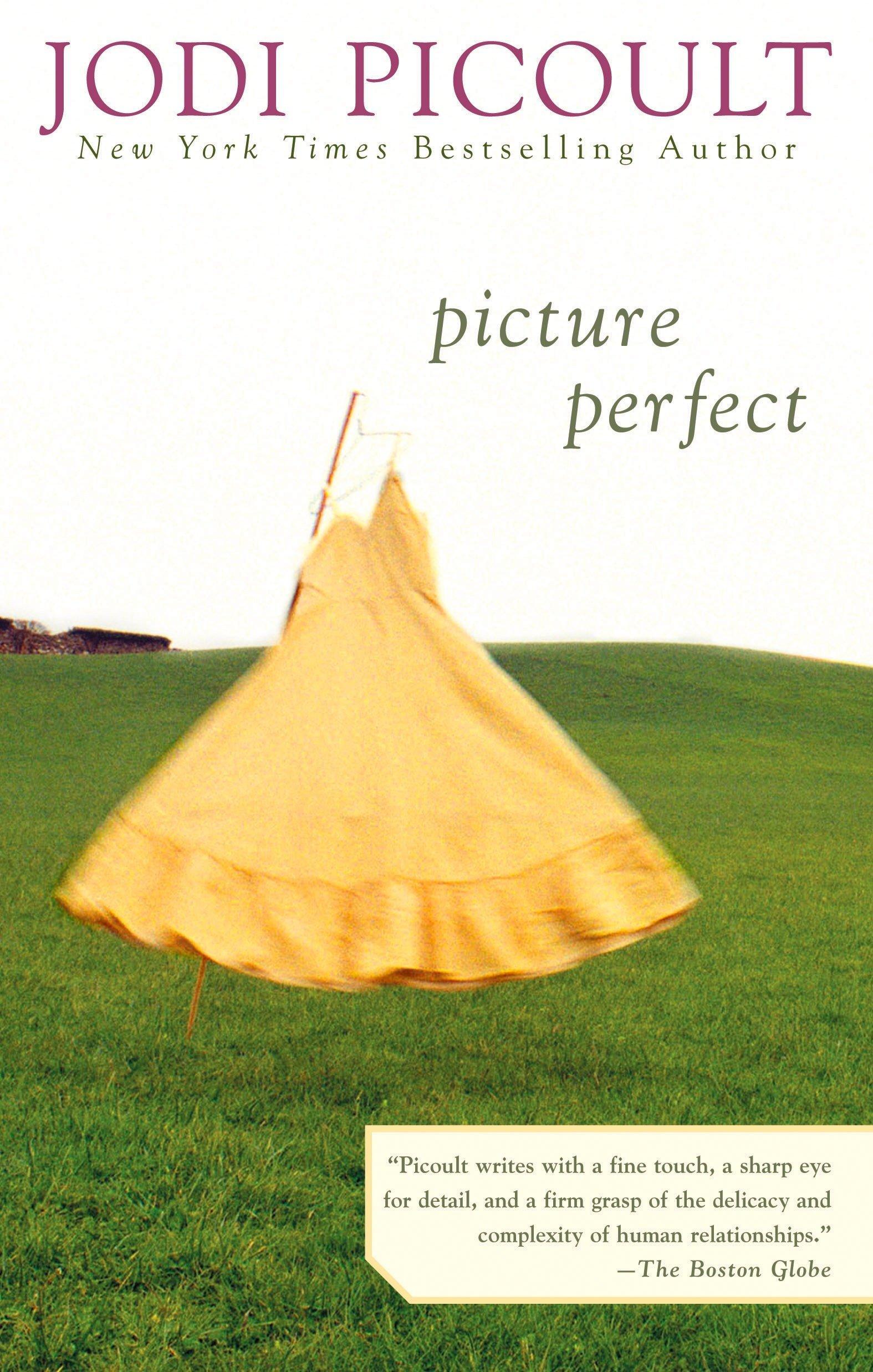 Picture Perfect Picoult Jodi 9780425185506 Books