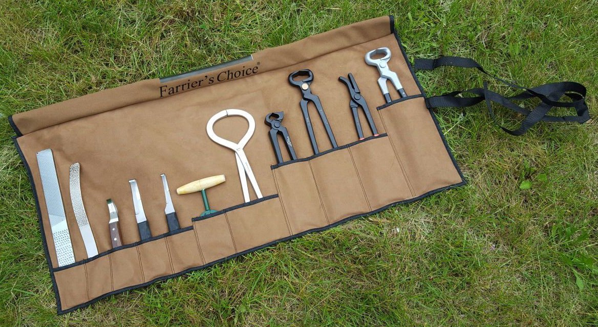 Equipment Essentials 11 Piece Farrier's Tool Kit Set Horse Hoof Nippers Clincher Tester Knife Rasp Chisel + Fold Up Case by Equipment Essentials