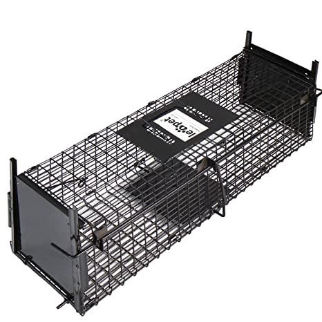 Leopet - Jaula de hierro trampa para ratas, ratones y roedores ...