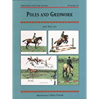 POLES AND GRIDWORK (Threshold Picture Guides Book 26)