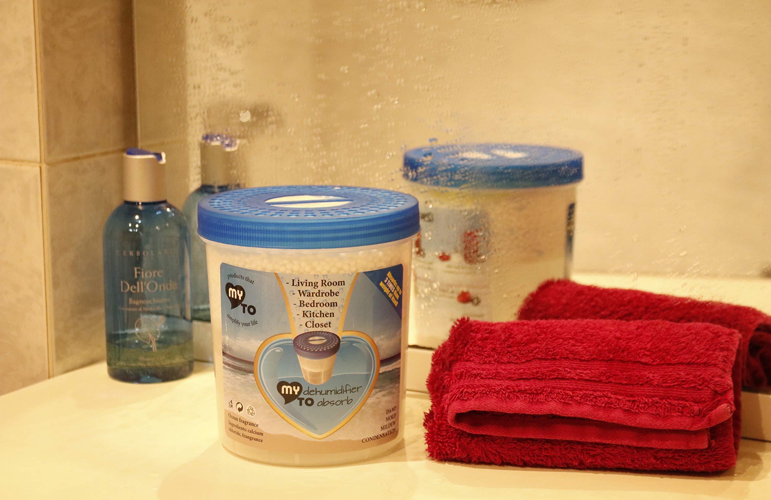 Deumidificatore per ambiente con sali profumati, antimuffa assorbi umidità ricaricabile MY DEHUMIDIFIER TO ABSORB per casa, bagno, armadio, barca, purificatore d\'aria, assorbe i cattivi odori