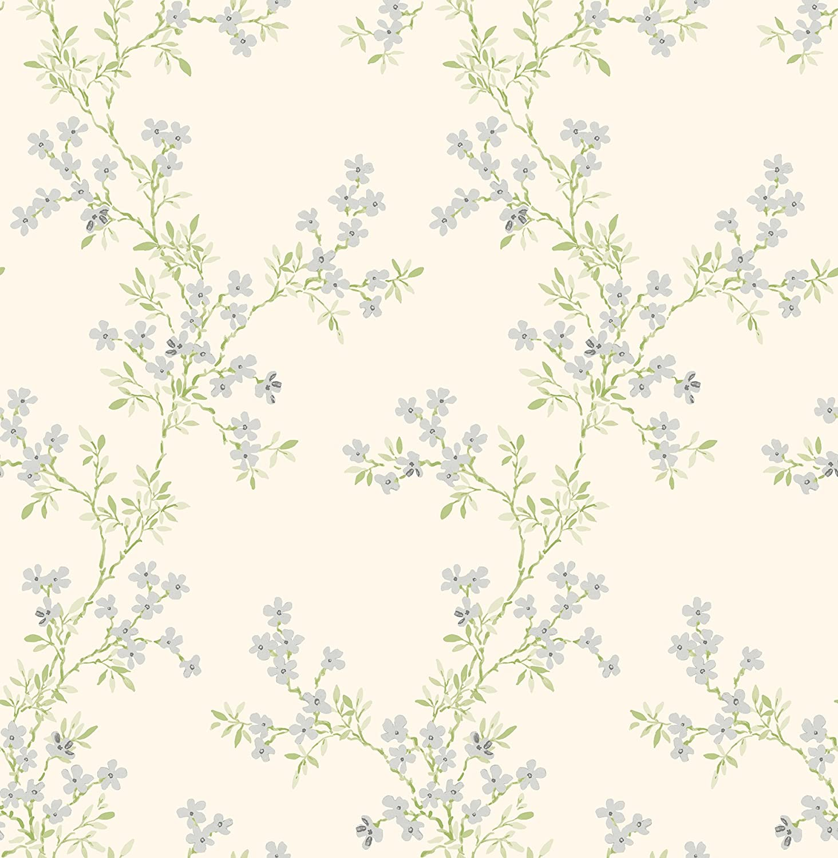 BHF fd22262/AMI Claire verde floral Trail papel pintado/ /Plata