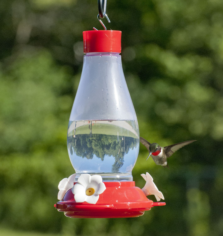 Audubon Plastic Hummingbird Feeder, 30 oz. Model NA35239 Kay Home Products