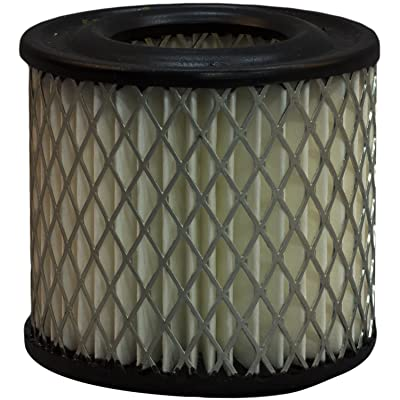 Luber-finer LAF190-12PK Heavy Duty Air Filter, 12 Pack: Automotive