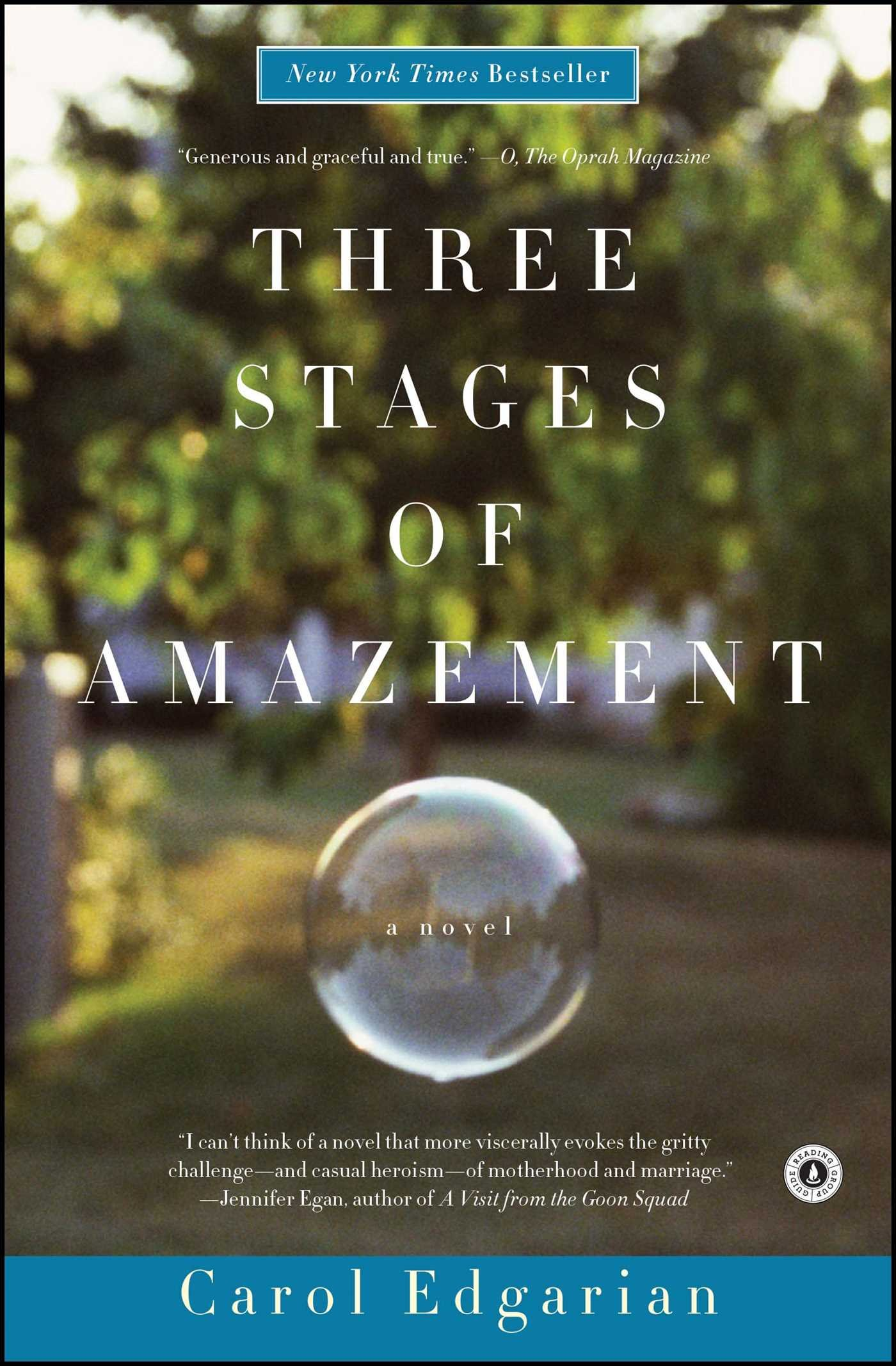 Download Three Stages of Amazement: A Novel pdf