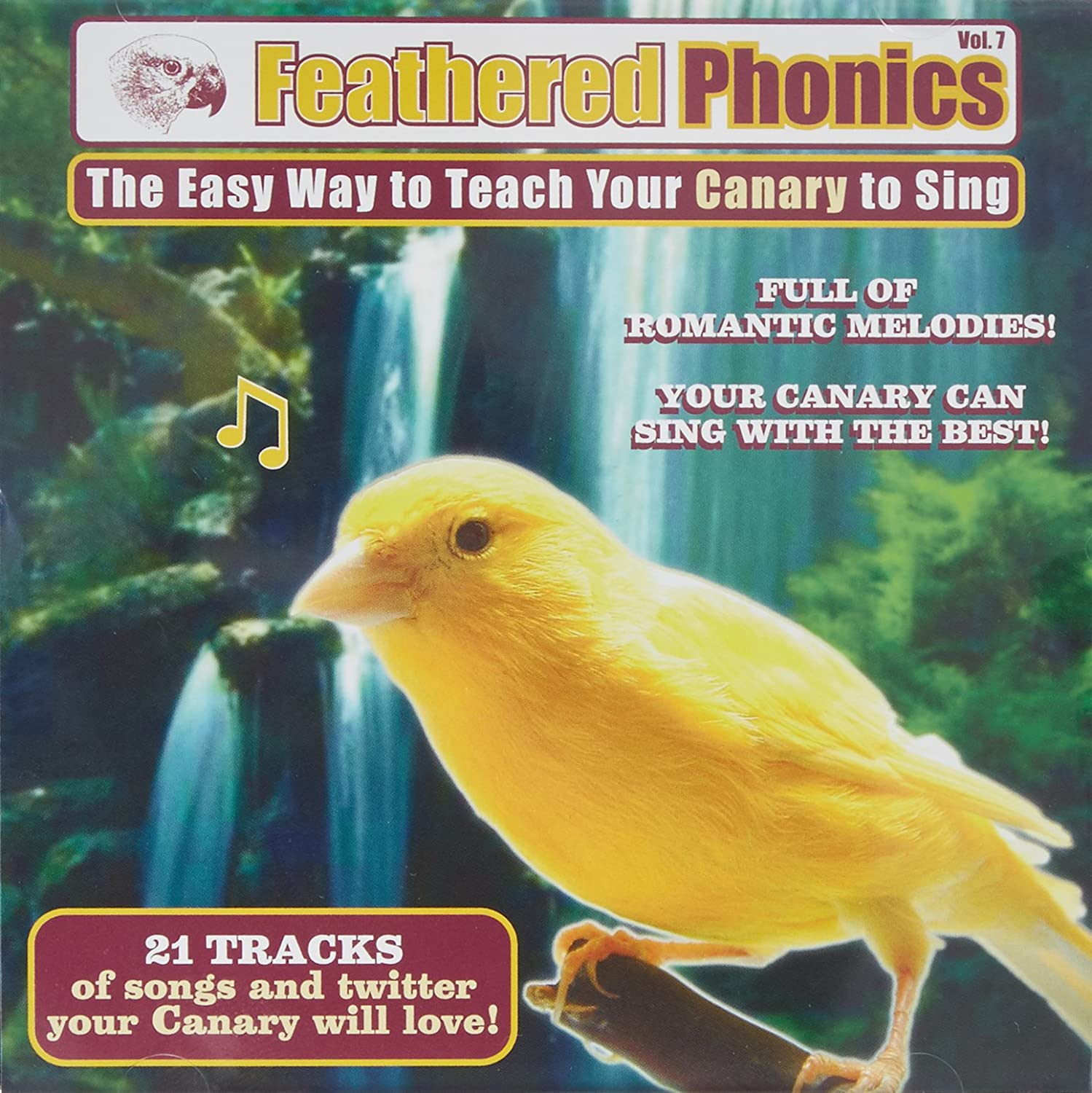 Pet Media Feathered Phonics Volume 7  The The The Easy Way to Teach Your Canarie a cantare be98a1