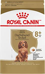 Royal Canin Breed Health Nutrition Dachshund 8+ Adult Dry Dog Food