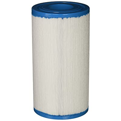 Filbur FC-2385 Antimicrobial Replacement Filter Cartridge for Rainbow/Pentair Dynamic 35 Pool and Spa Filter : Swimming Pool Filters : Toys & Games