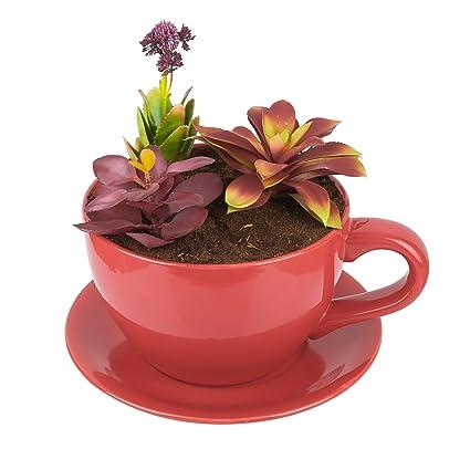 Coffee Cup Flower Pot