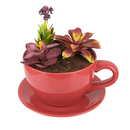 Lifestyle Porcelain Tea Cup And Saucer Shaped Garden Patio Office