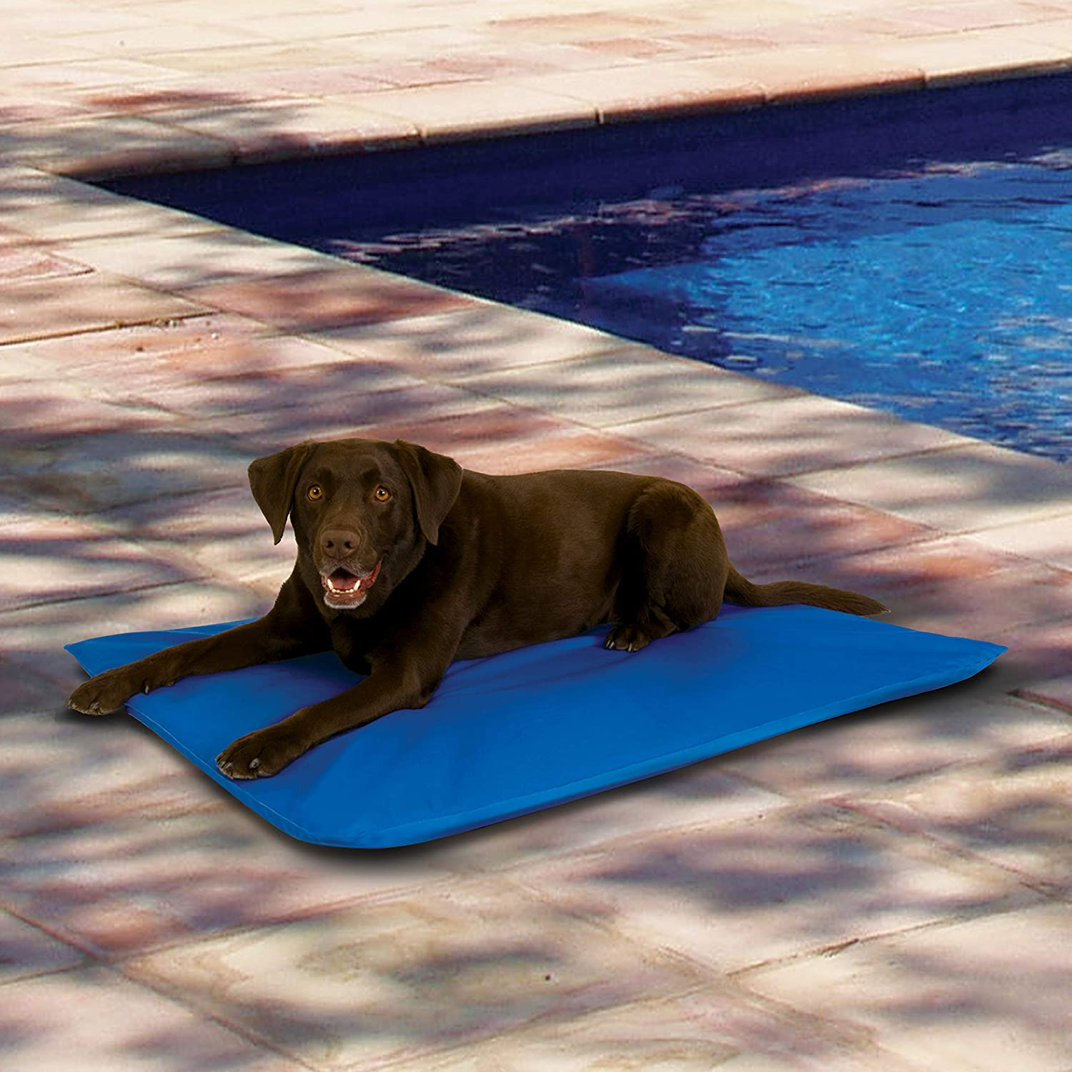 Best Cooling Mat For Dogs (2021): Top 10 Reviews 2