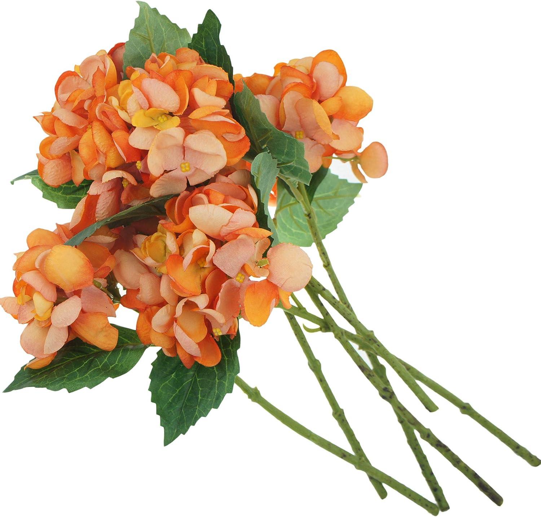 Lily Garden 12.5