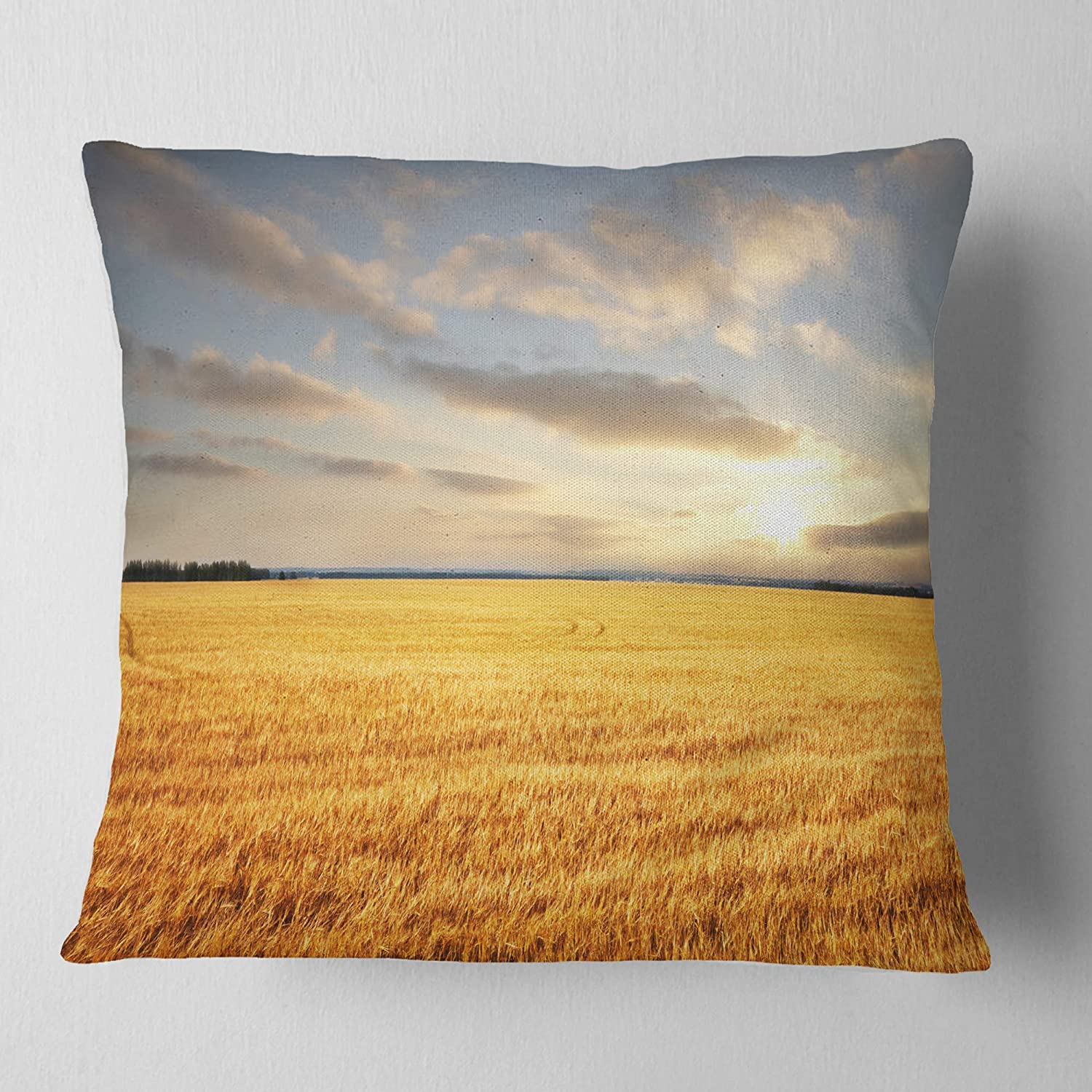 Designart CU12198-18-18 Expansive Brown Field' Landscape Printed Cushion Cover for Living Room, Sofa Throw Pillow, 18' x 18', Insert