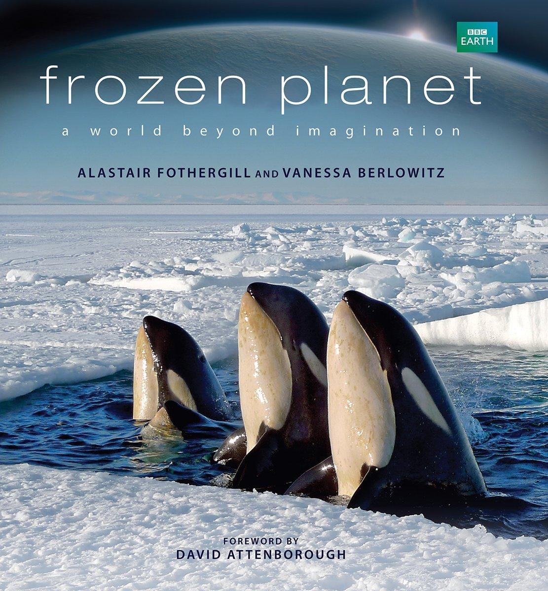 Frozen Planet: A World Beyond Imagination: Fothergill, Alastair, Berlowitz,  Vanessa, Attenborough, David: 8601404414381: Books - Amazon.ca