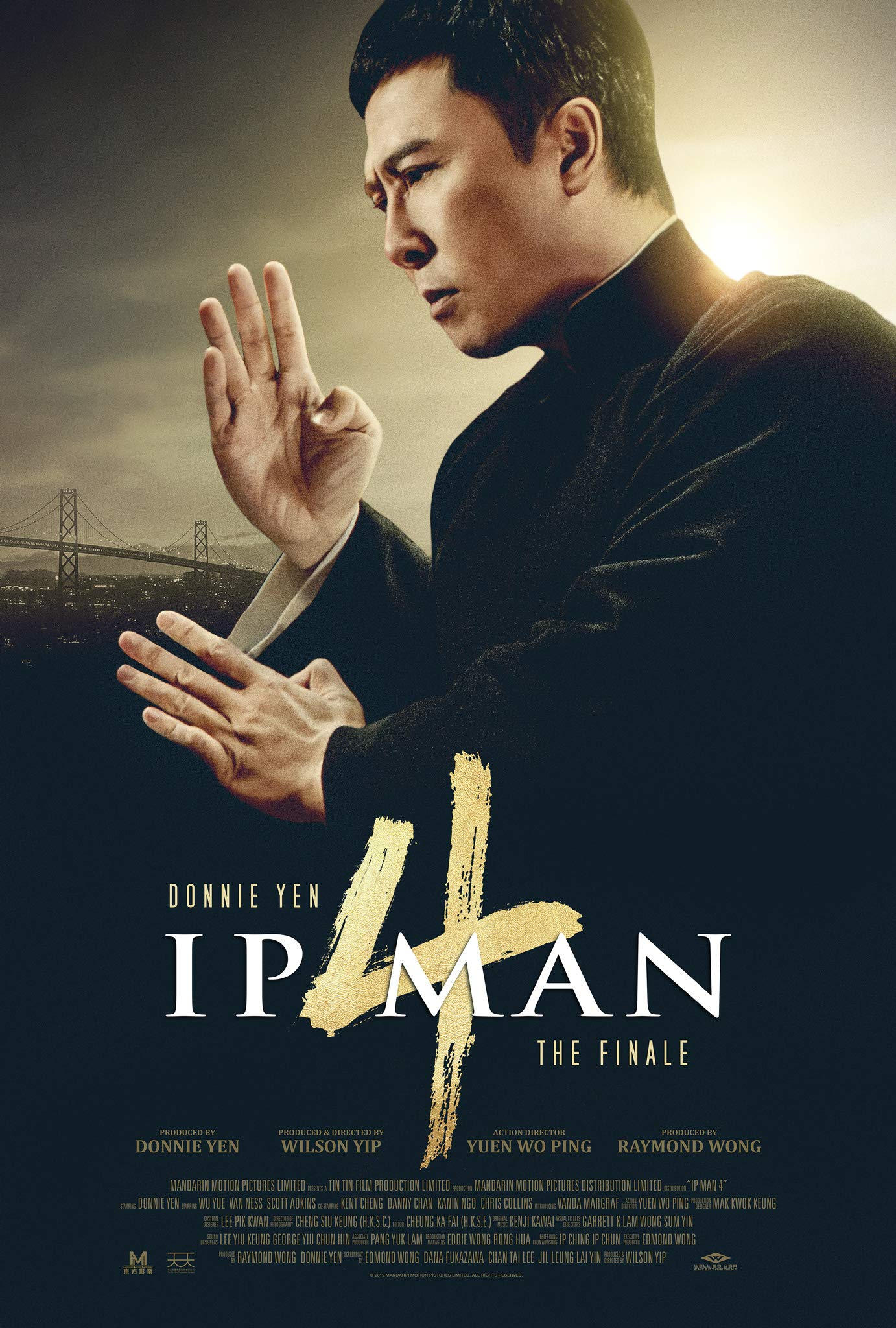 Book Cover: Ip Man 4: The Finale