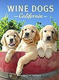 Wine Dogs California 2