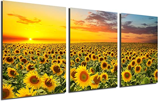 Sunflower Decor Wall Art Prints Black and White Yellow Canvas Painting Flower Plant Daisy Floral Pictures 3 Panels Unframed Bedroom Living Room Bathroom Kitchen Decoration Home Office Modern Artwork