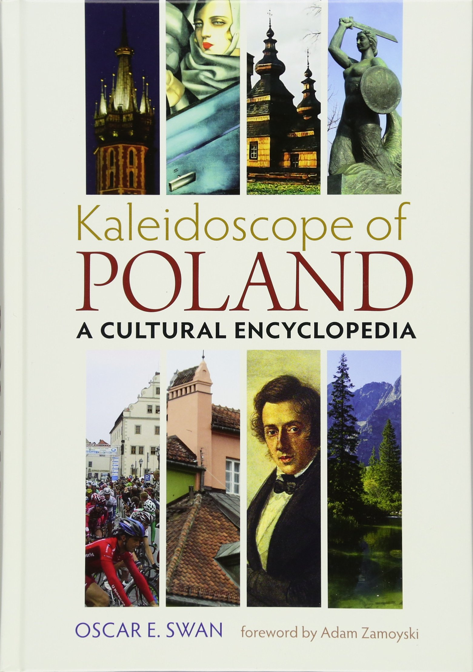 Download Kaleidoscope of Poland: A Cultural Encyclopedia (Russian and East European Studies) pdf epub