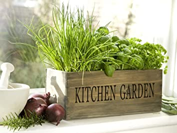 Good Kitchen Herb Garden Kit Windowsill Window Box Planter With Seeds