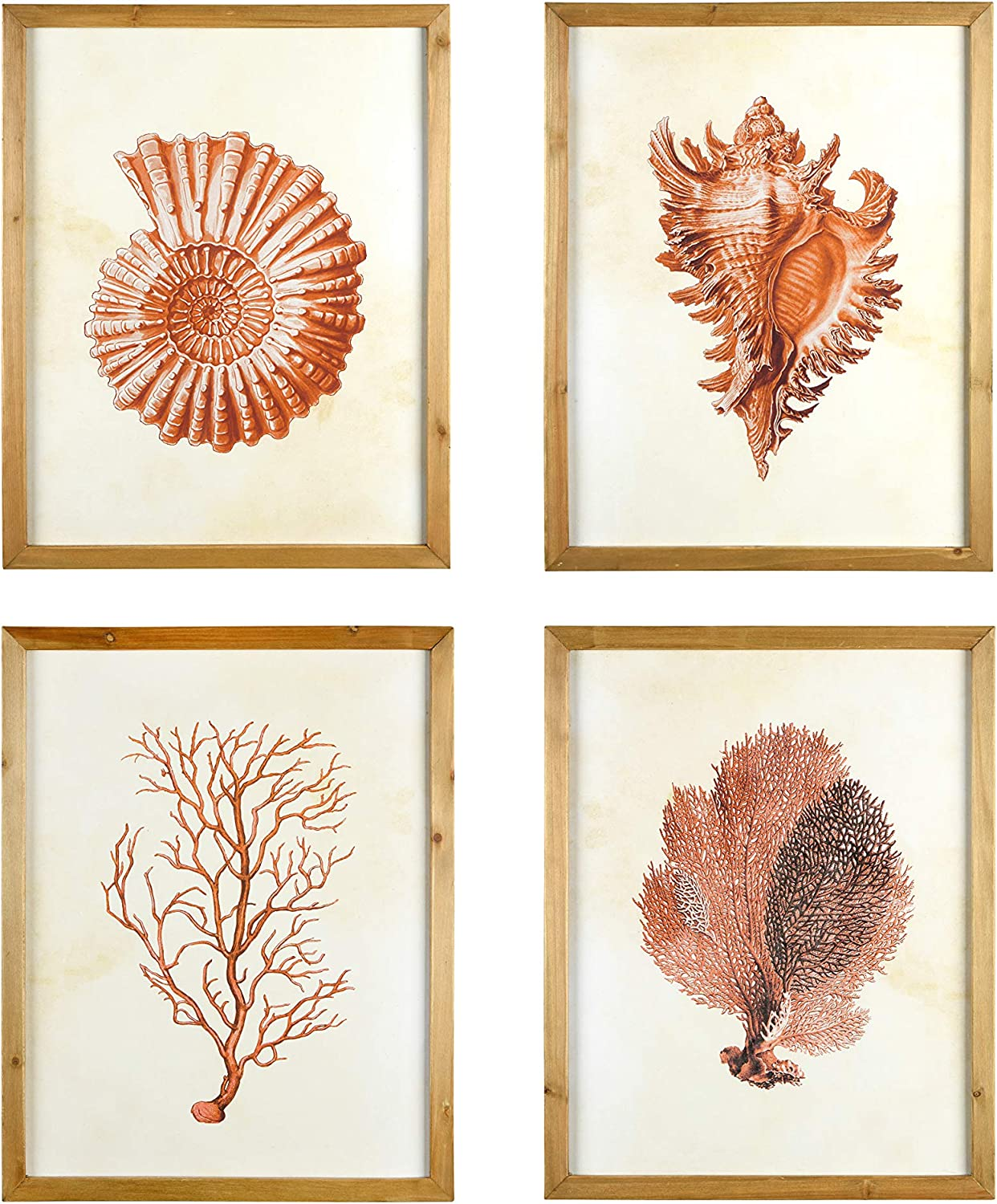 Creative Co-Op Wood Framed Art with Red Shells & Coral (Set of 4 Designs) Wall Decor