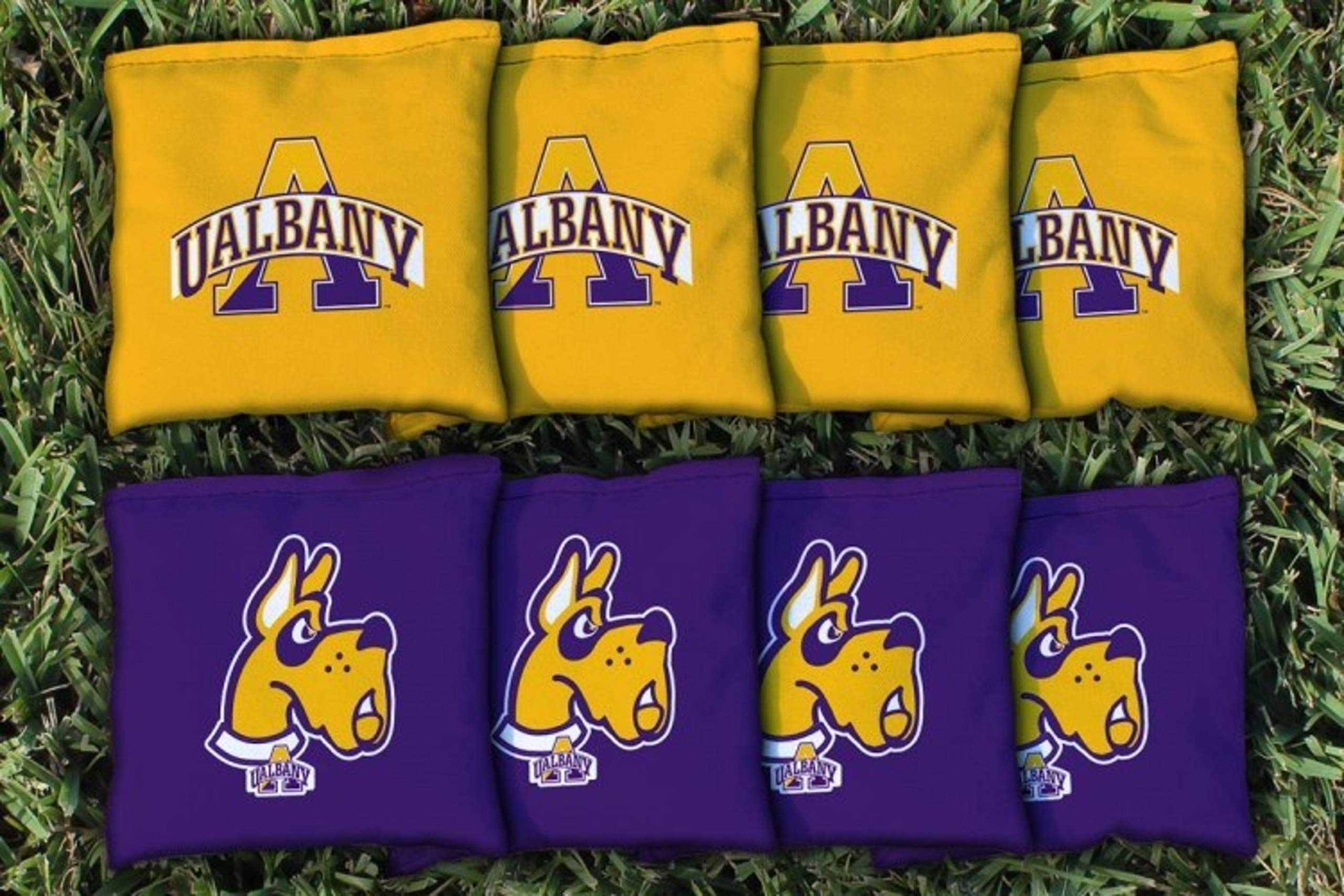 Victory Tailgate NCAA Regulation Cornhole Game Bag Set (8 Bags Included, Corn-Filled) - Albany SUNY Great Danes