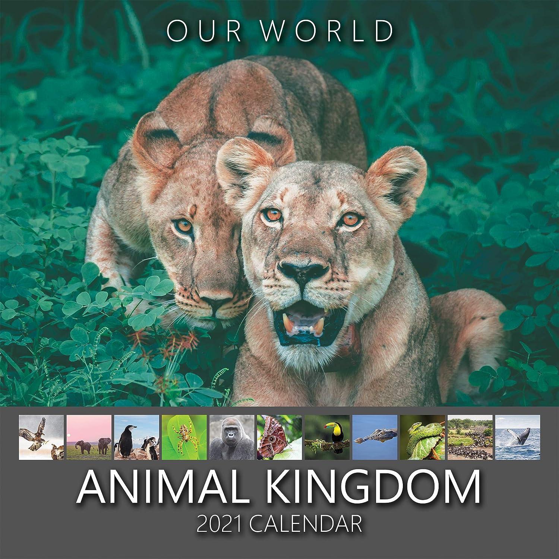 Our World Natural Wonders 2021 Nature Wall Calendar