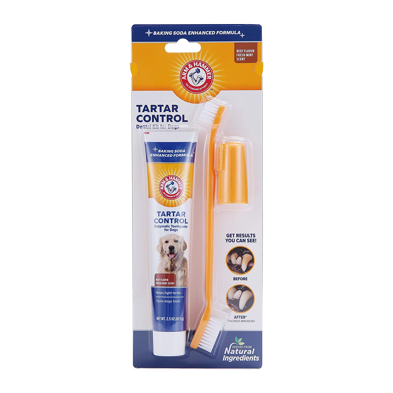Arm & Hammer Dog Dental Care Tartar Control Kit for Dogs