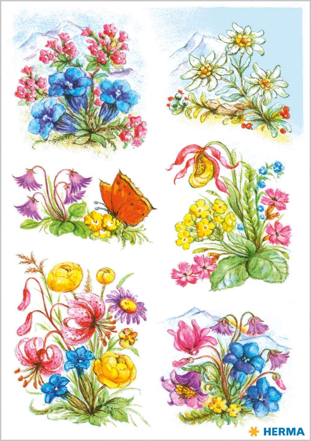 """HERMA Sticker DECOR Blumenstr/""""u/áe Maigl/""""ckchen"""