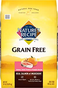 Nature's Recipe Grain Free Easy to Digest Dry Dog Food with Real Meat, Sweet Potato And Pumpkin