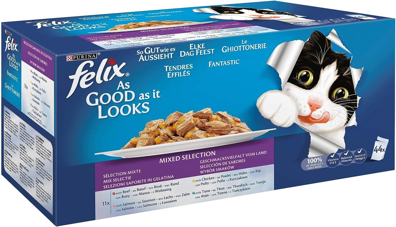 Felix ghiott. Multipack MA/Po/Sal.Y to. Gr 100 x 44: Amazon.es: Productos para mascotas