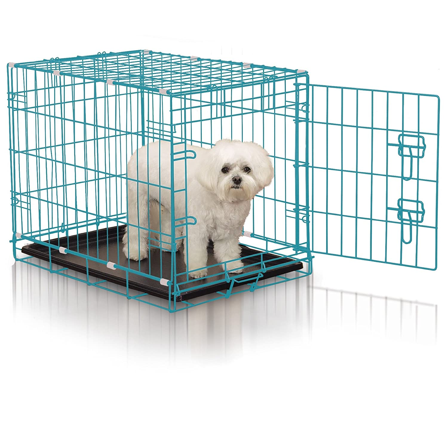 Amazon.com : Easy Dual Latching Dog Crate, Small, Teal : Pet Supplies