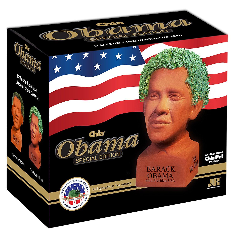 Amazon.com: Chia Obama Handmade Decorative Planter, Determined Pose ...