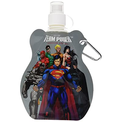 Water Bottle Key Chain - DC Comics New Toys Licensed 45433: Toys & Games