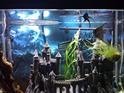 Hydor h2show magic world background with for Harry potter fish tank