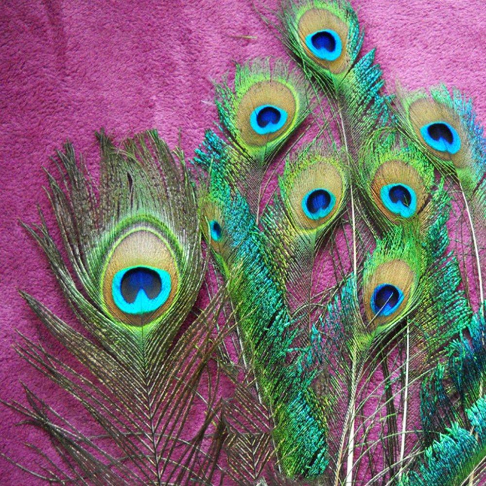 TEFOMATE 100piezas Plumas del pavo real con los ojos naturales Altas plumas de cola del pavo real de la calidad para la decoraci/ón 10-12