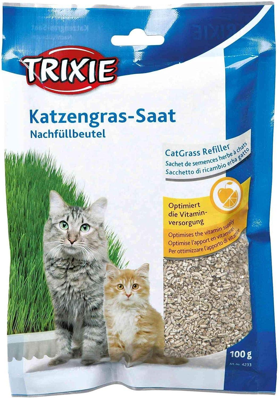 TRIXIE Recambio hierba Gatos ref. 4235, 100 g, Gato: Amazon.es: Productos para mascotas