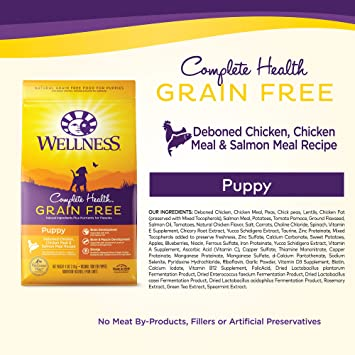 amazon com wellness complete health natural grain free dry puppy