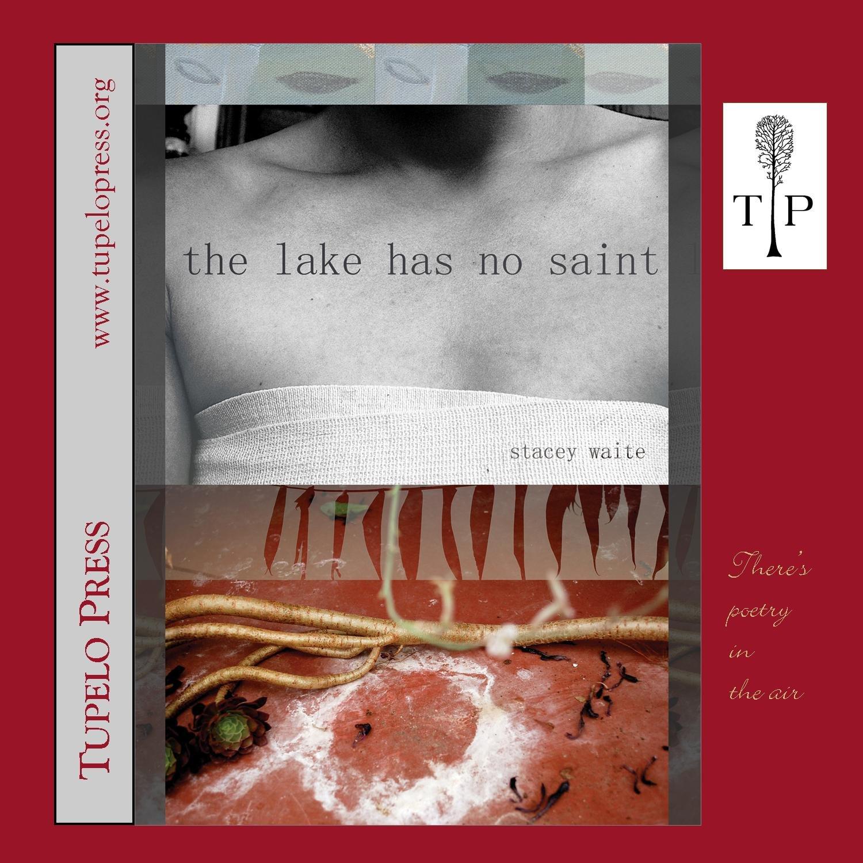 the lake has no saint ebook