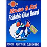 Golden Hammer Rat Glue Board, 1ct