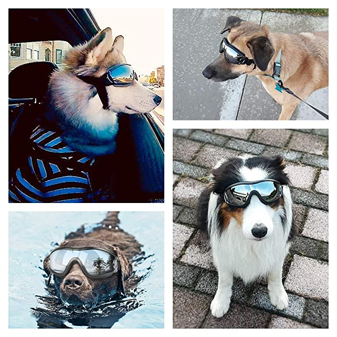 Amazon.com: PEDOMUS - Gafas de sol para perro, correa ...