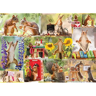 Gettin' Squirrelly 1000 Piece Puzzle: Toys & Games